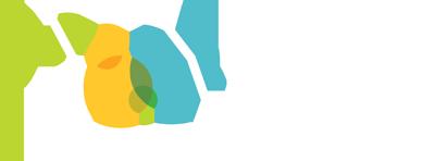 MFFH logo and link